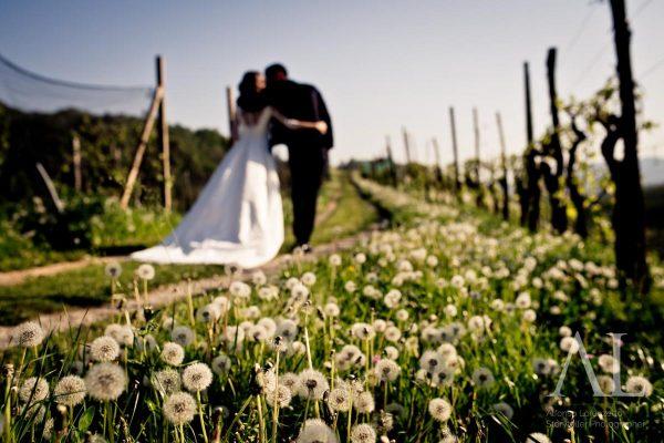 matrimonio_colline_del_prosecco_alfonso_lorenzetto_fotografo-7108