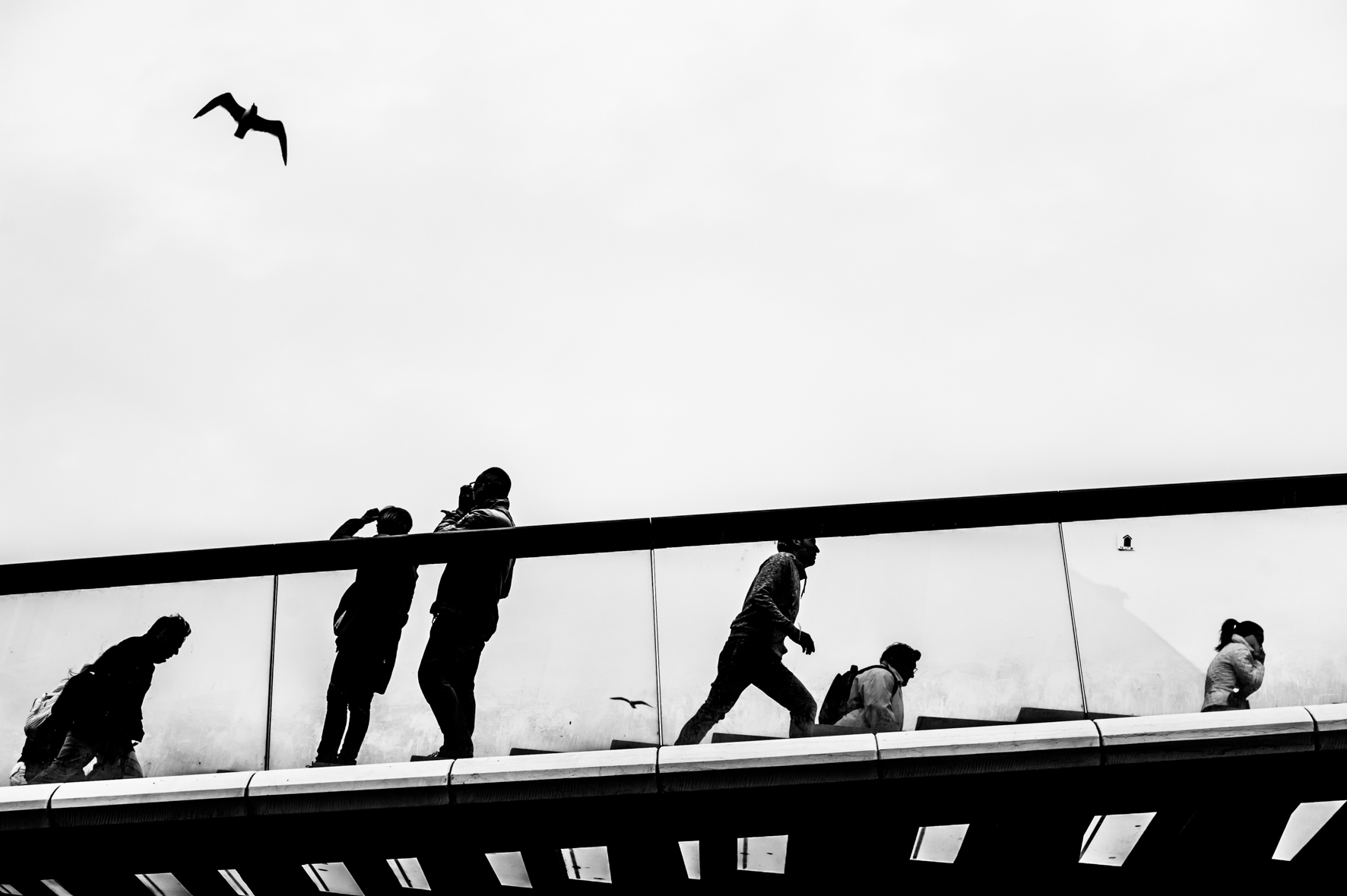 Workshop di Street Photography